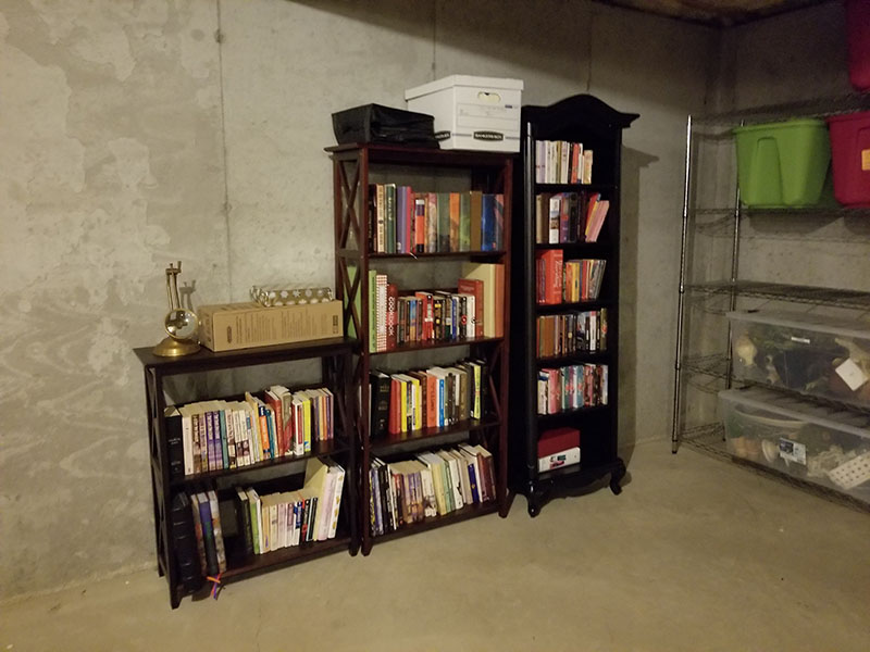 Basement Organization After 4